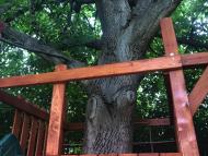 """""""GIGA"""" bástya 2 x 2 m mászó fallal , fa köré építve 4 hintával"""